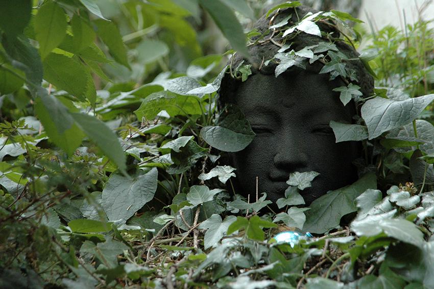 Buddhakop in einem Staudengarten. Umwuchert von Efeu.